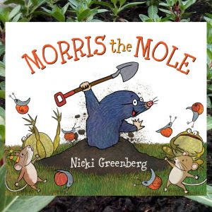 Morris the Mole by Nicki Greenberg